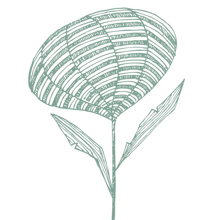 Modern botanics