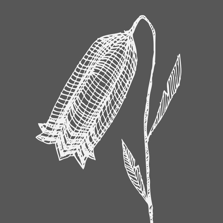 Modern botanic klock