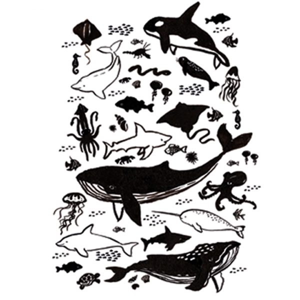 Whale sealife poster