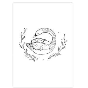 geboorte zwaantje